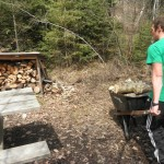 Freshman Logan Steingass wheels a load of wood to a fire ring for use by future campers.