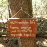One of the many signs along the Spirit Trail, indicating a point in time in the development of life on Earth.