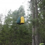 Three of our food bags suspended in the air.  The US Forest Service recommends hanging the food at least 12 feet off the ground.