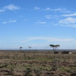 Community ranch near Ol Pejeta