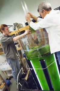 Aaron Kauffman and Dr. Stan Grove remove a polypropylene mat that is used to harvest the algae grown in a photobioreactor.