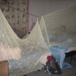 Rigging up the mosquito nets in close quarters