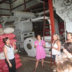 learning about organic cotton