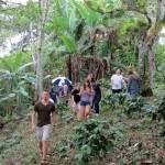 In search of furry wildlife in the coffee grove