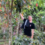 Josh shows a cacao tree
