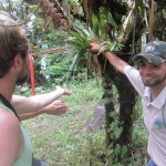 Our guide shows us how to find potable water in the forest