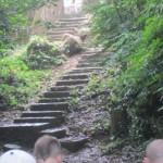 One of the very few sets of steps on the steep hike. The rest of it was trails.