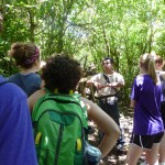 Facts about the forest from our excellent guide