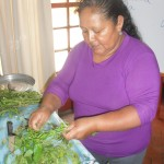 Alicia describes how herbs are used as medicine in the Andes