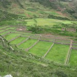 farming terraces at Tipon
