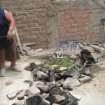 the earthen oven