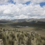 At the edge of the vicuna reserve