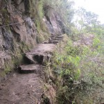 The steep trail up Huayna Picchu