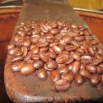 Coffee beans ready for grinding