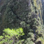 Trail to Huayna Picchu