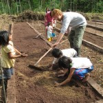 Preparing the soil for planting