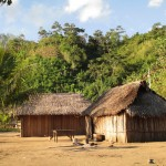 Traditional houses constructed of bamboo and wood with thatched roofs