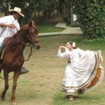 "The famed ""caballo de paso"" (riding horse) performing a traditional dance"