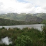 Lake Huacarpay is part of the Pacific Flyway, a resting place for migratory birds