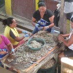 Sorting and cleaning shrimp for local consumption