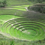 These concentric terraces are unique -- each terrace simulates growing conditions at a different altitude