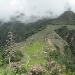 View of Machu Picchu citadel as we descend