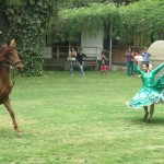 The rider demonstrates a traditional Peruvian dance