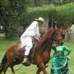 The horse and rider are careful to keep a safe distance during the dance