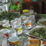 Medicinal teas are produced from fresh herbs grown in the highlands and trucked down to Lima for sale in local markets