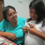 Mother Rosa and sister Almendra with two of their baby chicks