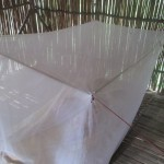 Mosquito netting provides a sanctuary when sleeping