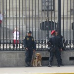 Standing guard outside the Presidential Palace