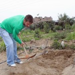 Alan breaks up soil with an axe.