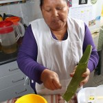Alicia Taipe Tello prepares a drink using aloe vera.