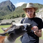 Landon makes a new friend at Machu Picchu.