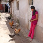 Thomas' host sister, Reina, watches the family's chickens.