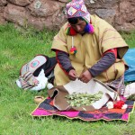The Shaman brought coca leaves, which are very important to the Andean people.