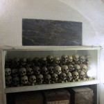 Skulls of people who were buried in the cathedral.