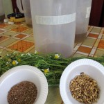 Ingredients for 'Emoliente' - Most emoliente will have toasted barley, flax seeds, and lime juice. To this you can add other things like anise, boldo, lemon verbena, lemongrass, or cat's claw.