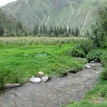 A mountain stream and fields near the archeological site at Ollantaytambo.