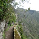 The narrow trail to the Inca Bridge.