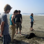 A dog who often tagged along with the group is digging in search of a sandcrab.