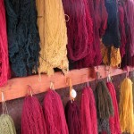 Some of the wool that has been dyed, hung to dry.