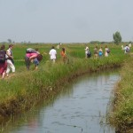 Walking in the rice fields