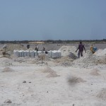 Harvesting salt at Lac Rose