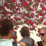 Ndem - Hot, Dry, But the Bougainvillea Blossom