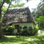 Traveller's Lodge - a bit of an oasis away from the bustle of Dar