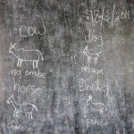 Teaching animal vocabulary!