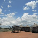 The Maganya goat exclosure and grain stores