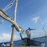 The dhow boat ride for snorkeling